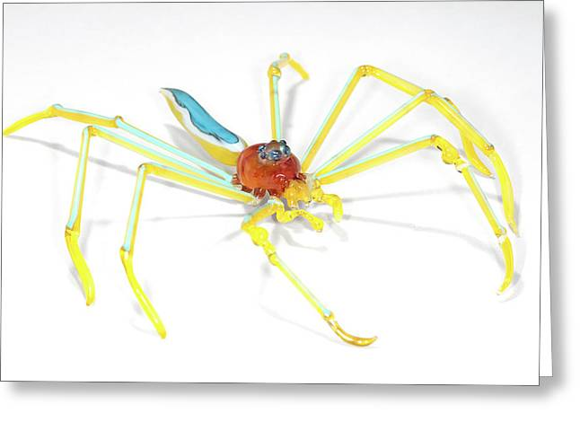 Spider Greeting Card by Tomasz Litwin