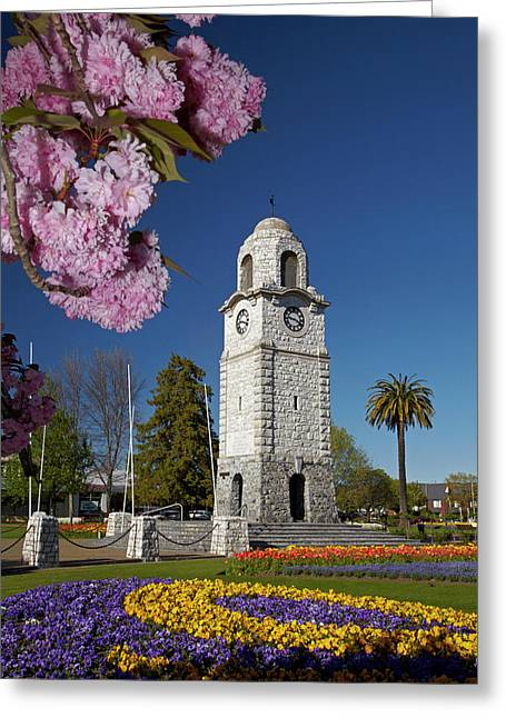 Spring Blossom And Memorial Clock Greeting Card by David Wall