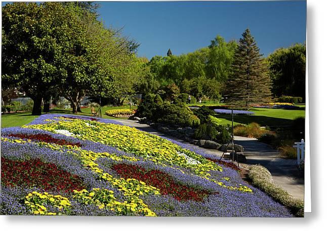 Spring Flowers, Pollard Park, Blenheim Greeting Card by David Wall