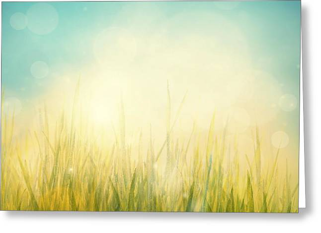 Spring Or Summer Abstract Season Nature Background  Greeting Card