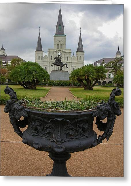 St. Louis Cathedral Vif Greeting Card