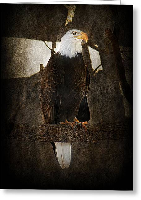 Standing Proud Greeting Card by Melanie Lankford Photography