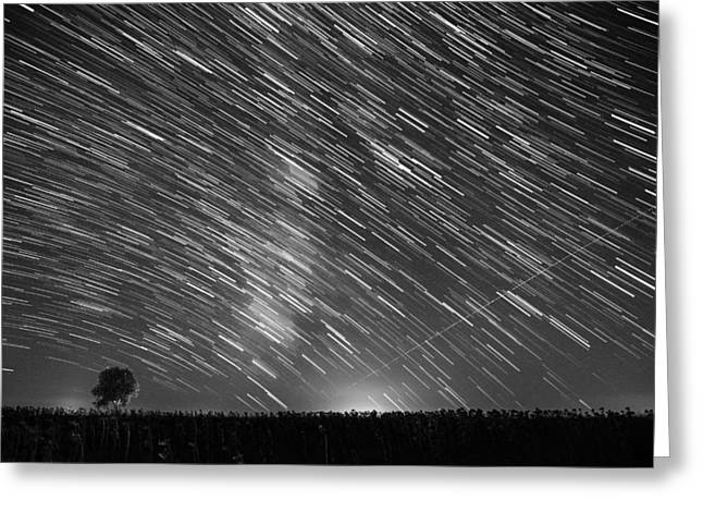 Startrail In Alentejo Greeting Card by Andre Goncalves