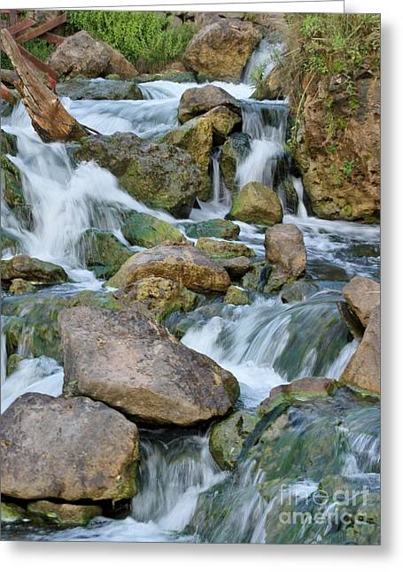 Step Down Falls Greeting Card by Butch Phillips