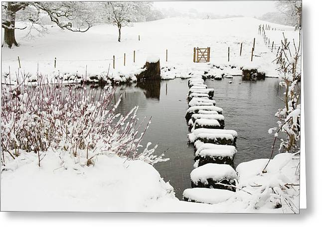 Stepping Stones Across A River Greeting Card