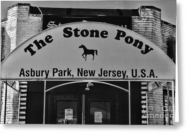 Stone Pony Greeting Card