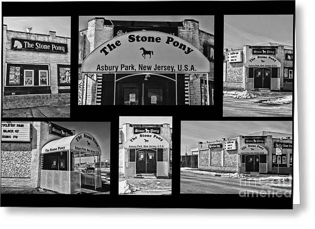 Stone Pony Tribute Greeting Card by Paul Ward
