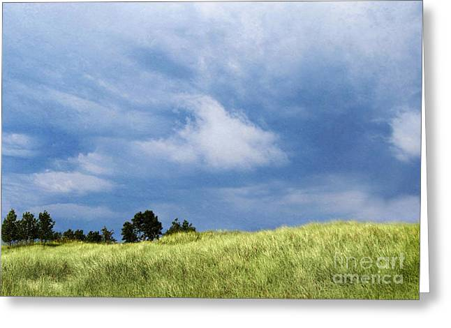 Storm Over Grassy Dune Greeting Card
