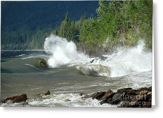 Stormy Lake Greeting Card by Leone Lund