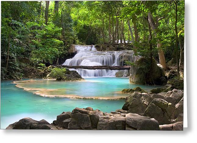 Stream With Waterfall In Tropical Forest Greeting Card