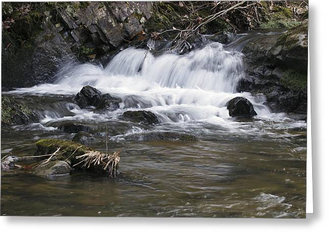 Greeting Card featuring the photograph Streambed by David Lester