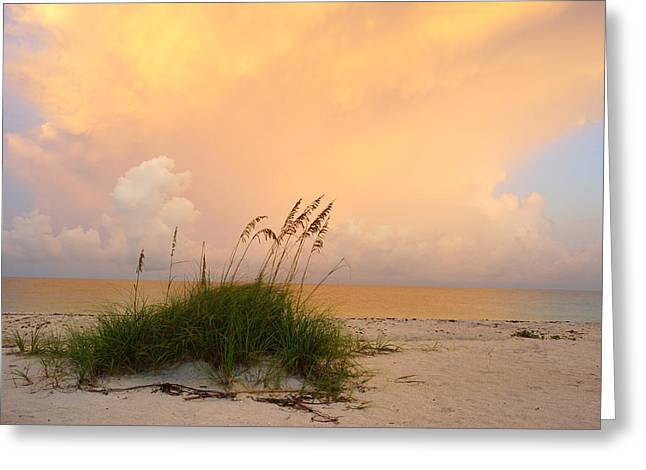 Summer Sunrise On Nokomis Beach Greeting Card