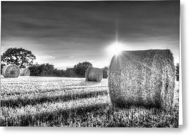 Summers Evening Farm Greeting Card
