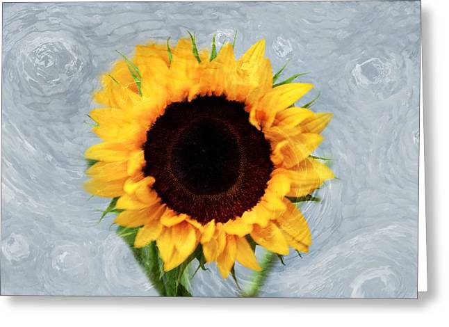 Sunflower Greeting Card by Bill Howard