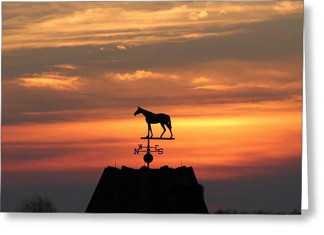 Sunrise At Keeneland Greeting Card by Megan Genova