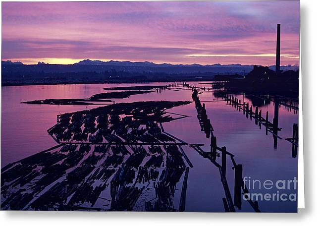 Sunrise Lumber Mill Greeting Card