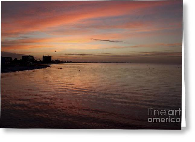 Greeting Card featuring the photograph Sunrise Over Fort Myers Beach Photo by Meg Rousher