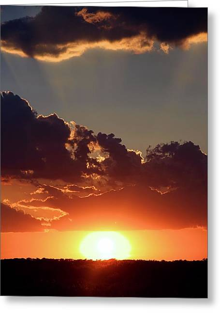 Greeting Card featuring the photograph Sunset by Elizabeth Budd