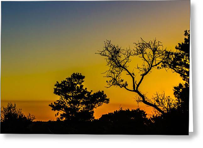 Sunset Silhouette Greeting Card by Debra and Dave Vanderlaan