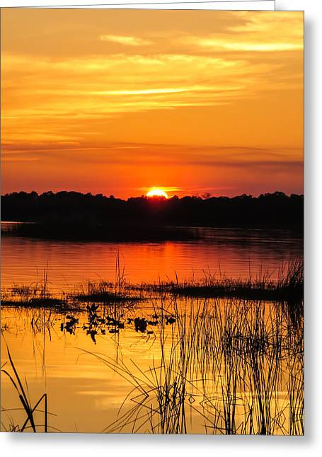 Sunset With Reflection Greeting Card by Zina Stromberg