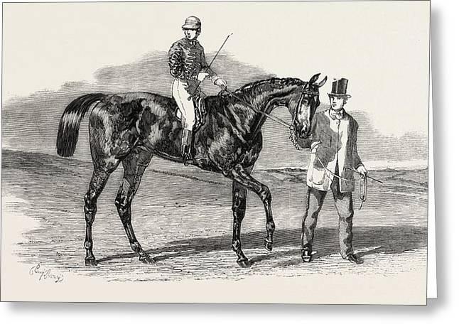 Sweetsauce The Winner Of The Stewards And The Goodwood Cups Greeting Card