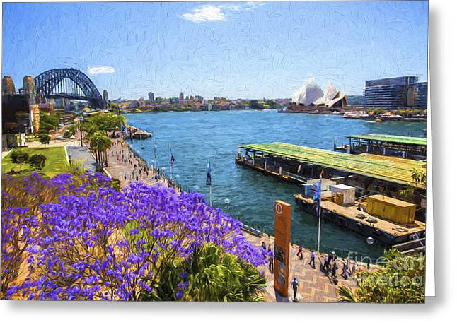 Sydney Harbour Jacaranda Greeting Card