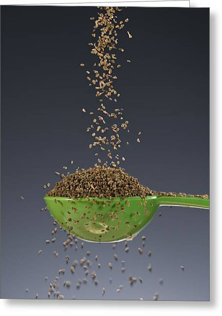 1 Tablespoon Celery Seed Greeting Card by Steve Gadomski