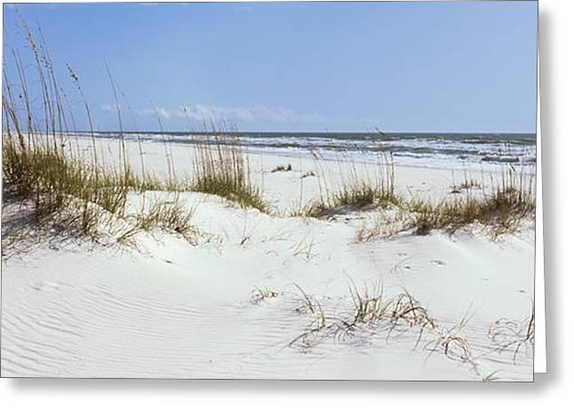 Tall Grass On The Beach, Perdido Key Greeting Card by Panoramic Images