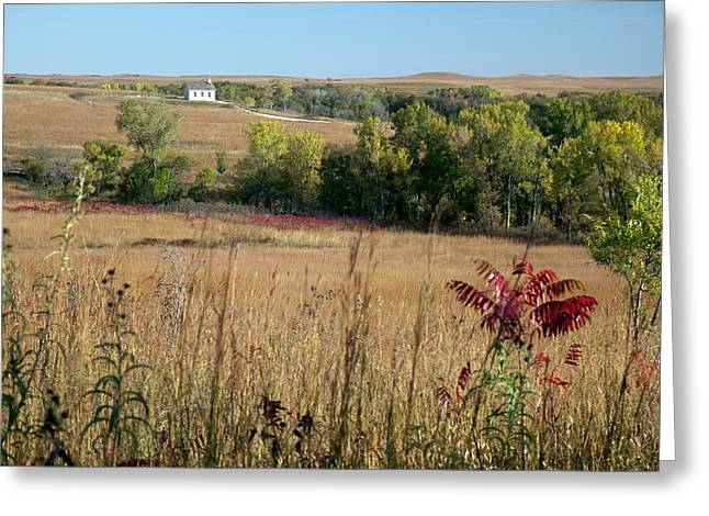 Tallgrass Prairie Greeting Card by Jim West