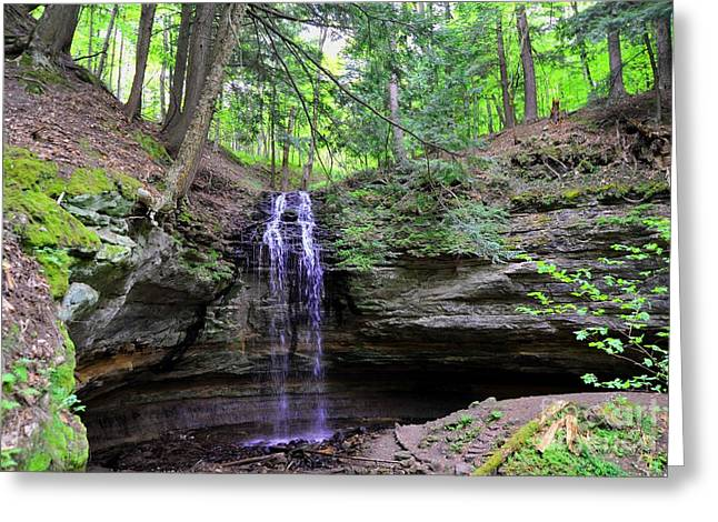 Tannery Falls Greeting Card by Terri Gostola