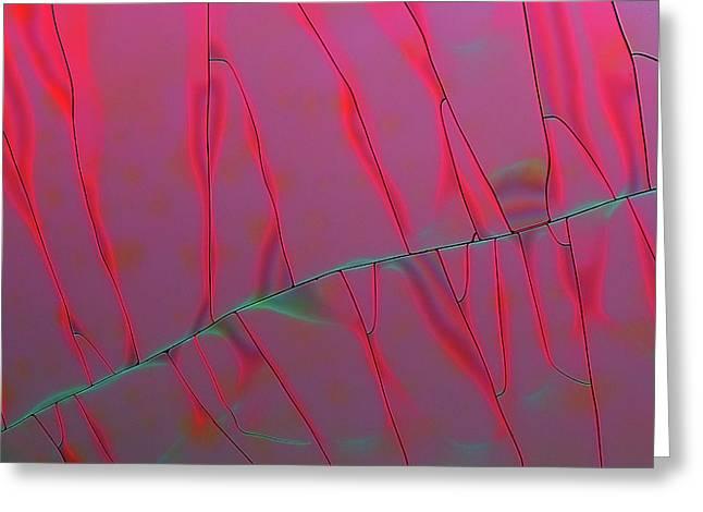 Tannic Acid Crystals Greeting Card