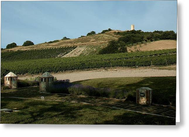 Tarquinia Countryside Greeting Card