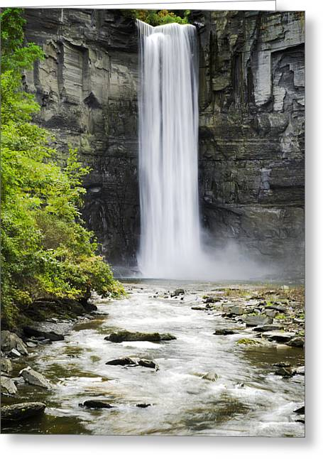 Taughannock Falls State Park Greeting Card by Christina Rollo