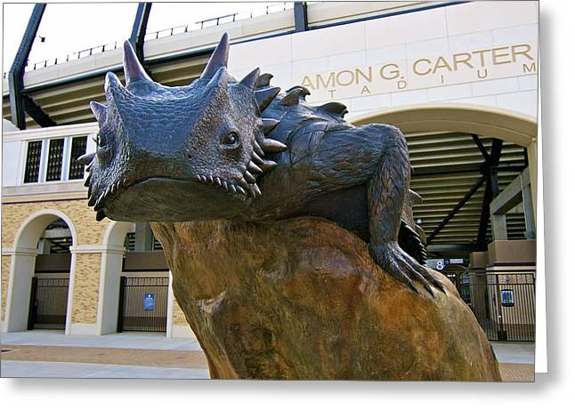 Tcu Horned Frogs..fear The Frog Greeting Card by John Babis