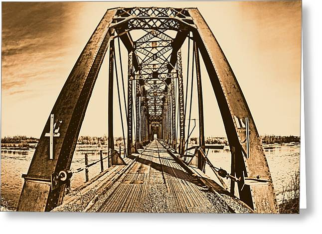 Terry Bridge Greeting Card by Leland D Howard