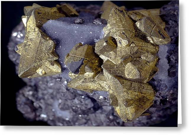 Tetrahedrite Greeting Card by Science Photo Library