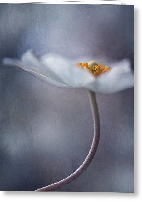 The Beauty Within Greeting Card by Priska Wettstein