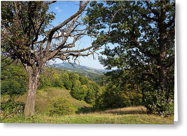 The Carpathian Mountains West Of Baia Greeting Card by Martin Zwick