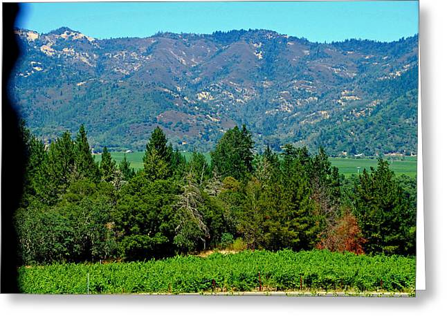 The Castle Winery Napa Valley California Greeting Card