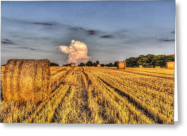 The Farm In Summer Greeting Card