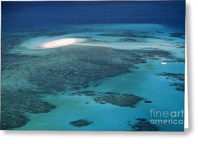The Great Barrier Reef Greeting Card