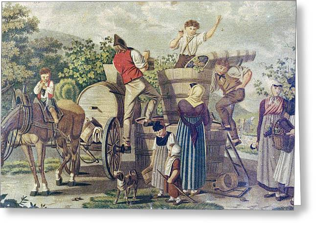 The Harvesting Of Wine Grapes, 19th Century Engraving, Time Greeting Card