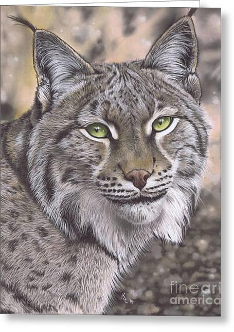 The Lynx Effect Greeting Card