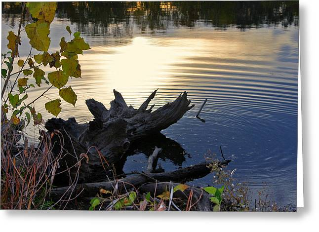 Greeting Card featuring the photograph The Ole Fishing Hole by Ellen Tully