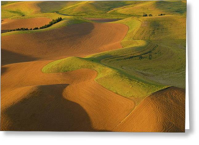 The Palouse From Above Greeting Card