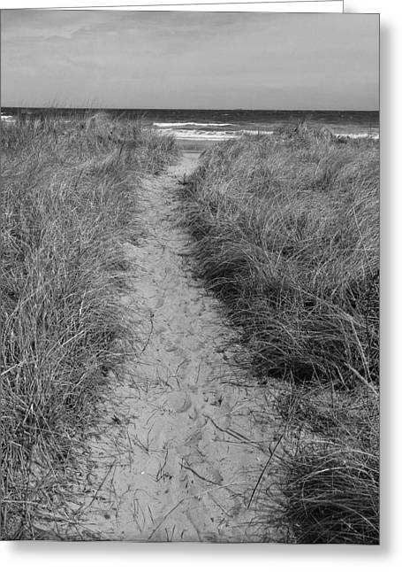 Greeting Card featuring the photograph The Path by Glenn DiPaola