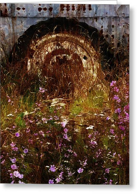 The Spare Wheel  Greeting Card by Steve Taylor