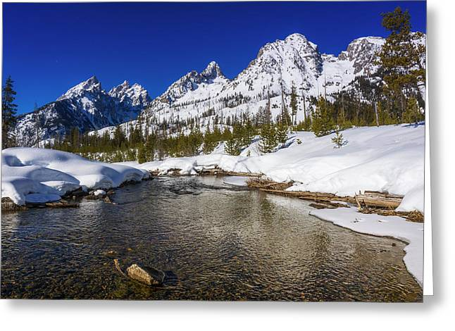 The Tetons In Winter Above Cottonwood Greeting Card