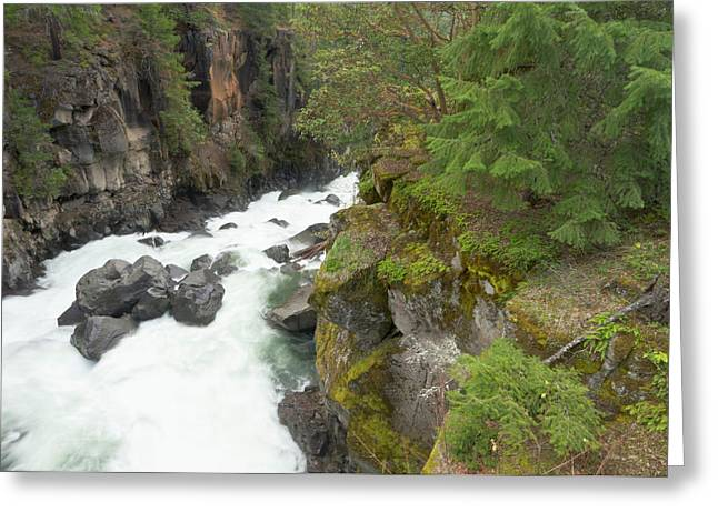 The Upper Rogue River Flows Greeting Card