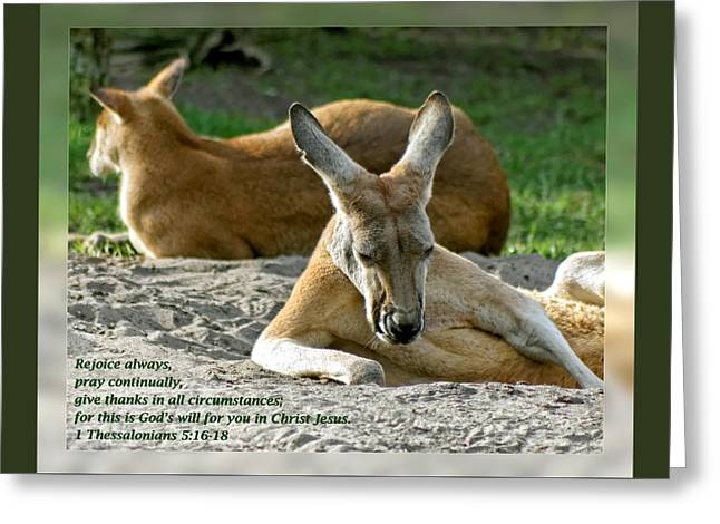 1 Thessalonians 5 16-18 Greeting Card by Dawn Currie